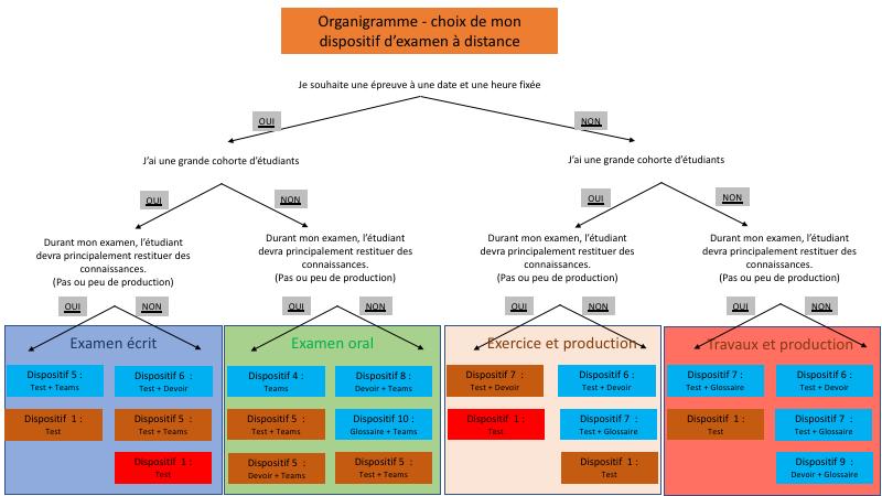 Organigramme évaluation