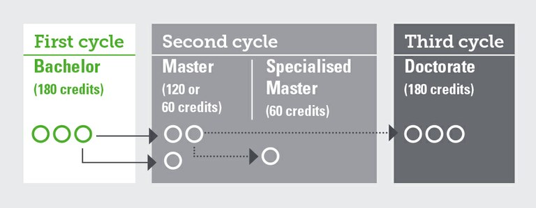 Study cycles