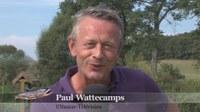 Paul Wattecamps