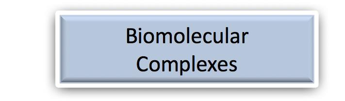 Biomolecular Complexes