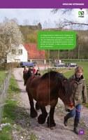 Brochure Centre du Mouton